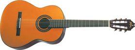 WASHBURN C 40 (N) - gitara klasyczna