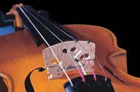 L.R. BAGGS Violin Pickup™ z gniazdem zewnętrznym