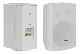 Głośnik 100V BS-1040TS/W