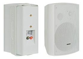 Głośnik 100V BS-1060TS/W