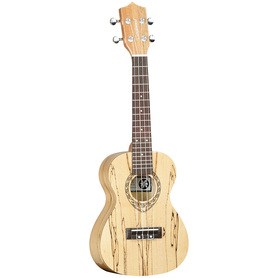 TANGLEWOOD TWT10