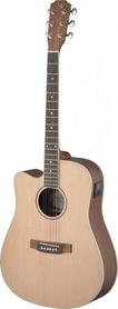 James Neligan ASY-DCE LH - gitara elektro-akustyczna, leworęczna