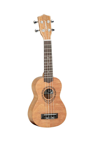 TANGLEWOOD TWT7