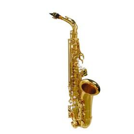 Saksofon Altowy SE-510-L Stewart Ellis Student Series