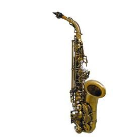 Saksofon Altowy SE-710-ALB Stewart Ellis Pro Series