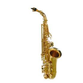 Saksofon Altowy SE-710-L Stewart Ellis Pro Series
