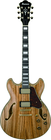 Ibanez AS93ZW-NT (2)