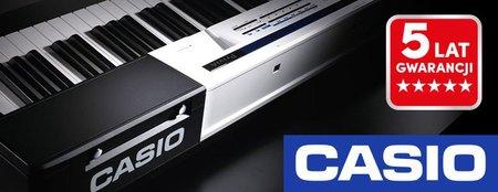 CASIO CT-X700  (2)