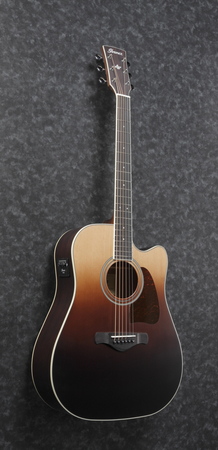 Ibanez AW80CE-BLG (2)
