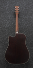 Ibanez AW80CE-BLG (5)